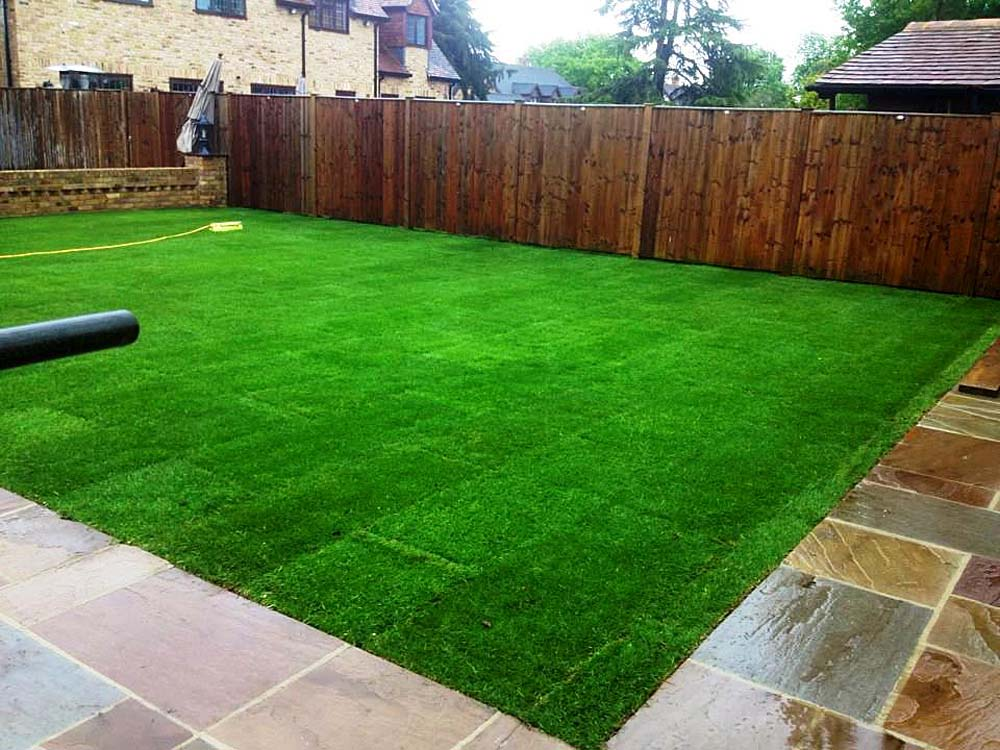 Jodie's New Lawn
