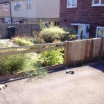 repairing the fence