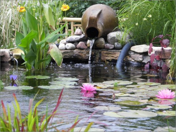 Its Time To Bring Your Pond Back To Life Mh Landscapes