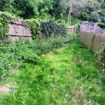 The back garden before...