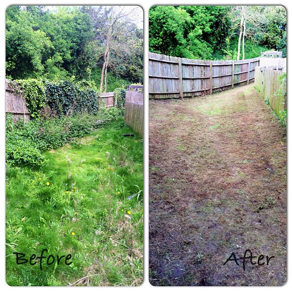 Peter's Garden Clearance