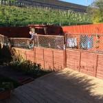 Broken fence panels