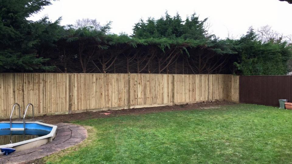 Clare's New Feather-Edge Fencing